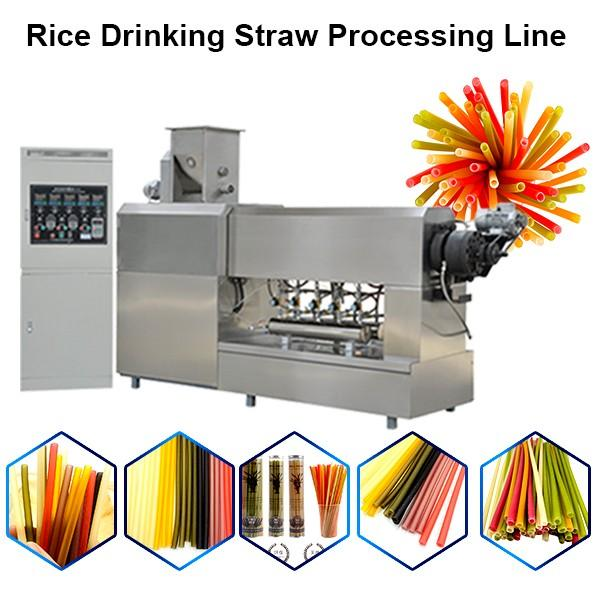 2019 Stainless Steel Factory Price Italy Noodles Making Machine / Pasta Straw Machine #1 image