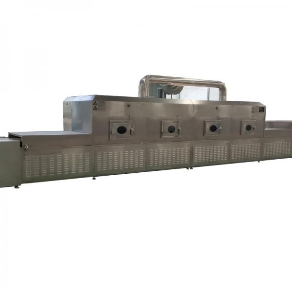 High Heat Efficiency microwave wheat flour drying and sterilization equipment #1 image