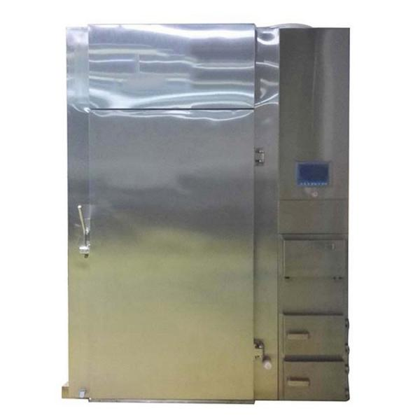 Industrial Electric Gas Meat Food Smoker #1 image