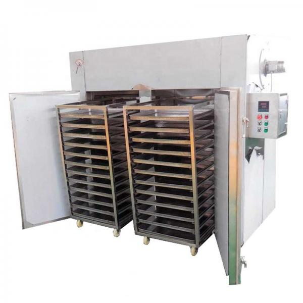 Continuous Dehydrated Vegetable Mesh Belt Dryer Machine #1 image